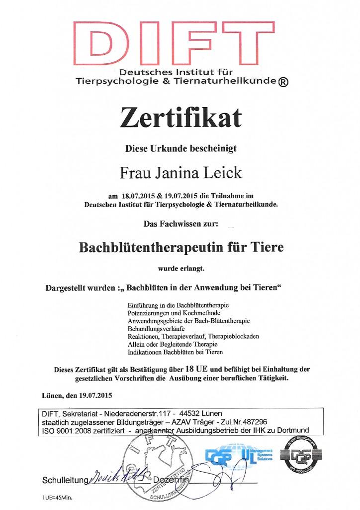 Zertifikat Veterinär Akupunktur